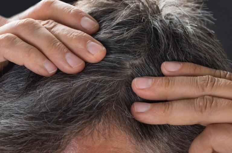 taber hår mand